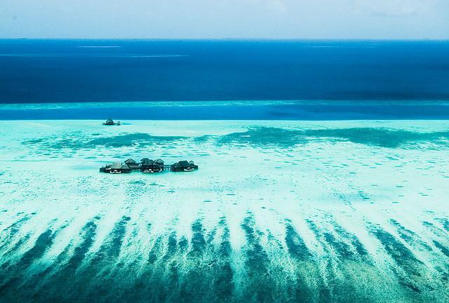 Maledivy