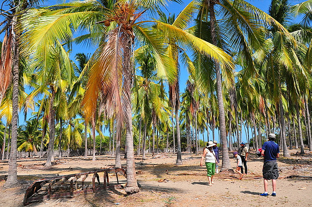 Isla Puná