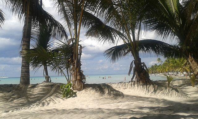 Dominikána