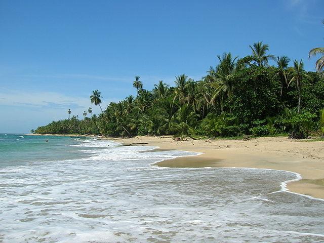 Punta Uva