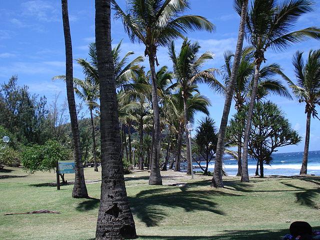 Grand Anse Réunion