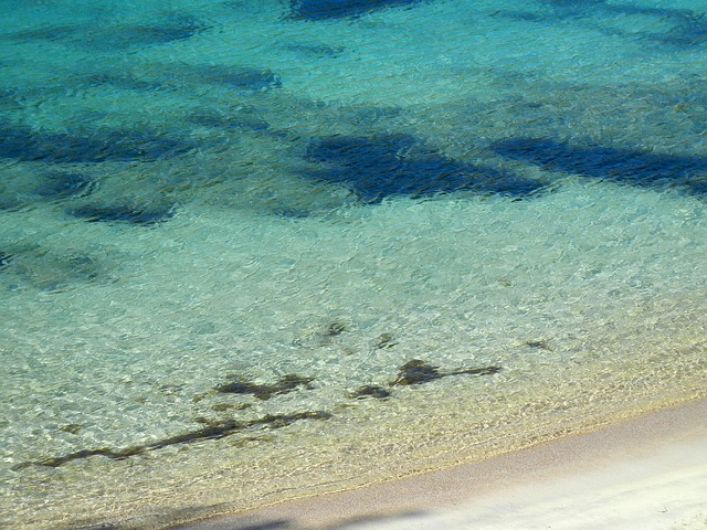Ibza Beach