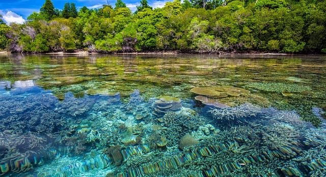 Widi Islands