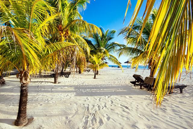 Mauritius Beach Scenery
